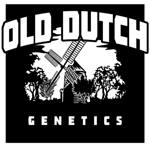 Logo Old Dutch Genetics