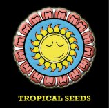 Logo Tropical Seeds Company