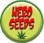Logo Hero Seeds