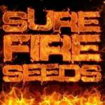 Logo Sure Fire Seeds