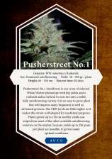 Pusherstreet No.1 Auto
