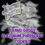 Grand Daddy Platinum PurpBerry Cookies