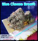 Blue Cheese Breath