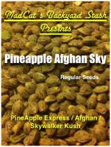 Pineapple Afghan Sky