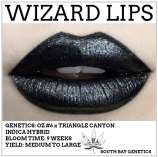 Wizard Lips