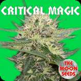 Critical Magic