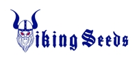 Logo Viking Seeds