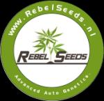 Logo Rebel Seeds