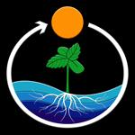 Logo TreeTown Seeds