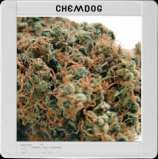 Chemdog #4
