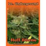 Hell Stone