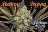 Happy Pappy