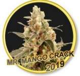 Mr. Mango Crack