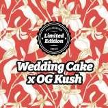Wedding Cake x OG Kush