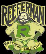 Reefermans Seeds Senor Garcia