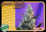 Sweet Skunk Auto