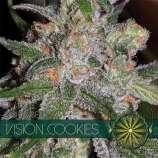 Vision Cookies