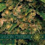 Vision Seeds Vision Critical