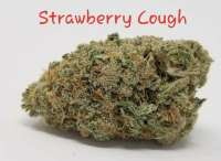Pic for Strawberry Cough (B.C. Bud Depot)