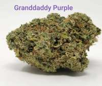 Pic for Granddaddy Purple (Blim Burn Seeds)