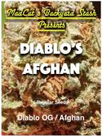 MadCat's Backyard Stash Diablo's Afghan - photo made by admin