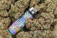 Picture from admin (Super Glue)