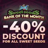 40% OFF SWEET SEEDS